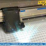 Cắt bế tem nhãn tròn nhỏ 8ly với máy cắt bế Graphtec CE6000-40 Plus