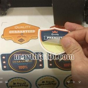 Cách kết hợp cắt bế demi và cắt rời tem nhãn, xả tờ trên máy cắt decal Graphtec CE6000 Plus